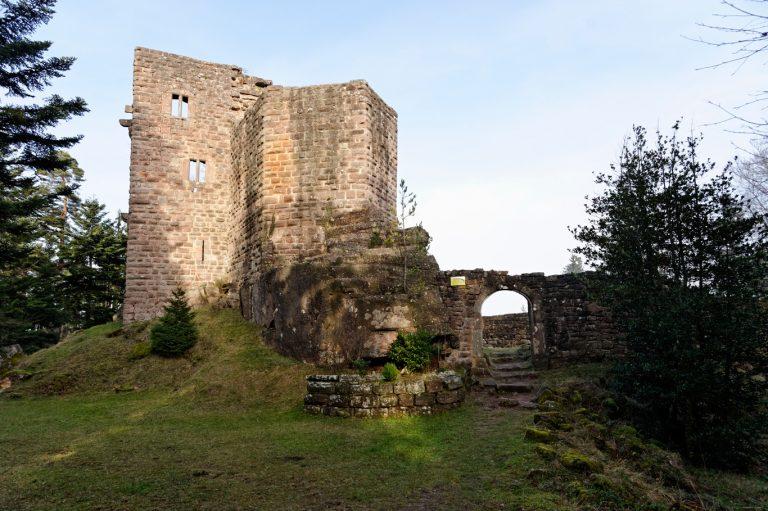 Palais et donjon du château du Birkenfels - Crédit : P. Lutz